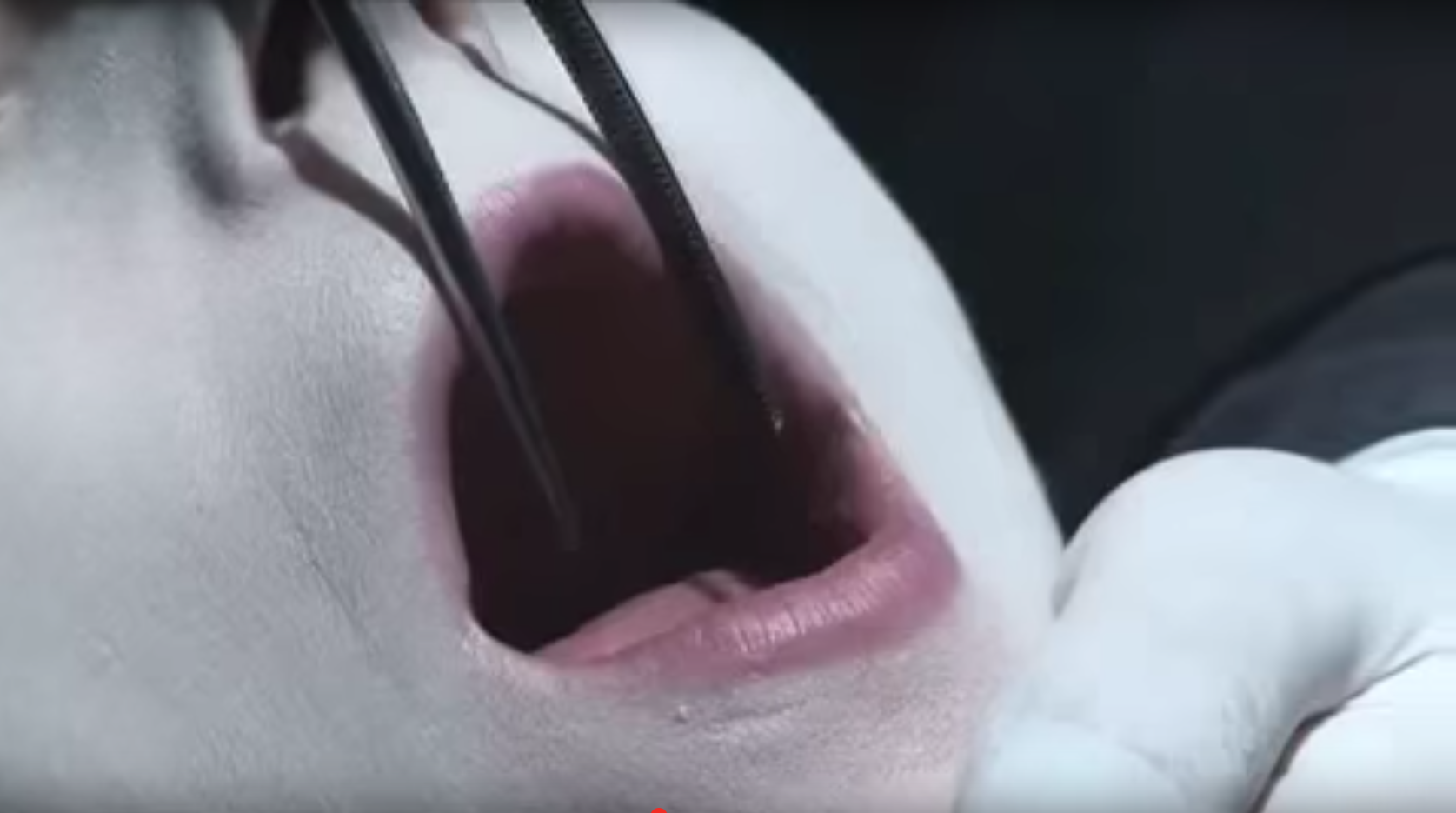 "Helnwein in ""MARILYN MANSON ""PHANTASMAGORIA: THE VISIONS OF LEWIS CARROLL"" TRAILER (UNCENSORED HD)"